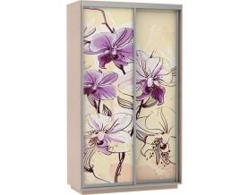 Базис Цветы 2-х дверный шкаф-купе 1200 мм